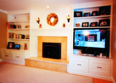 fireplace and multimedia center